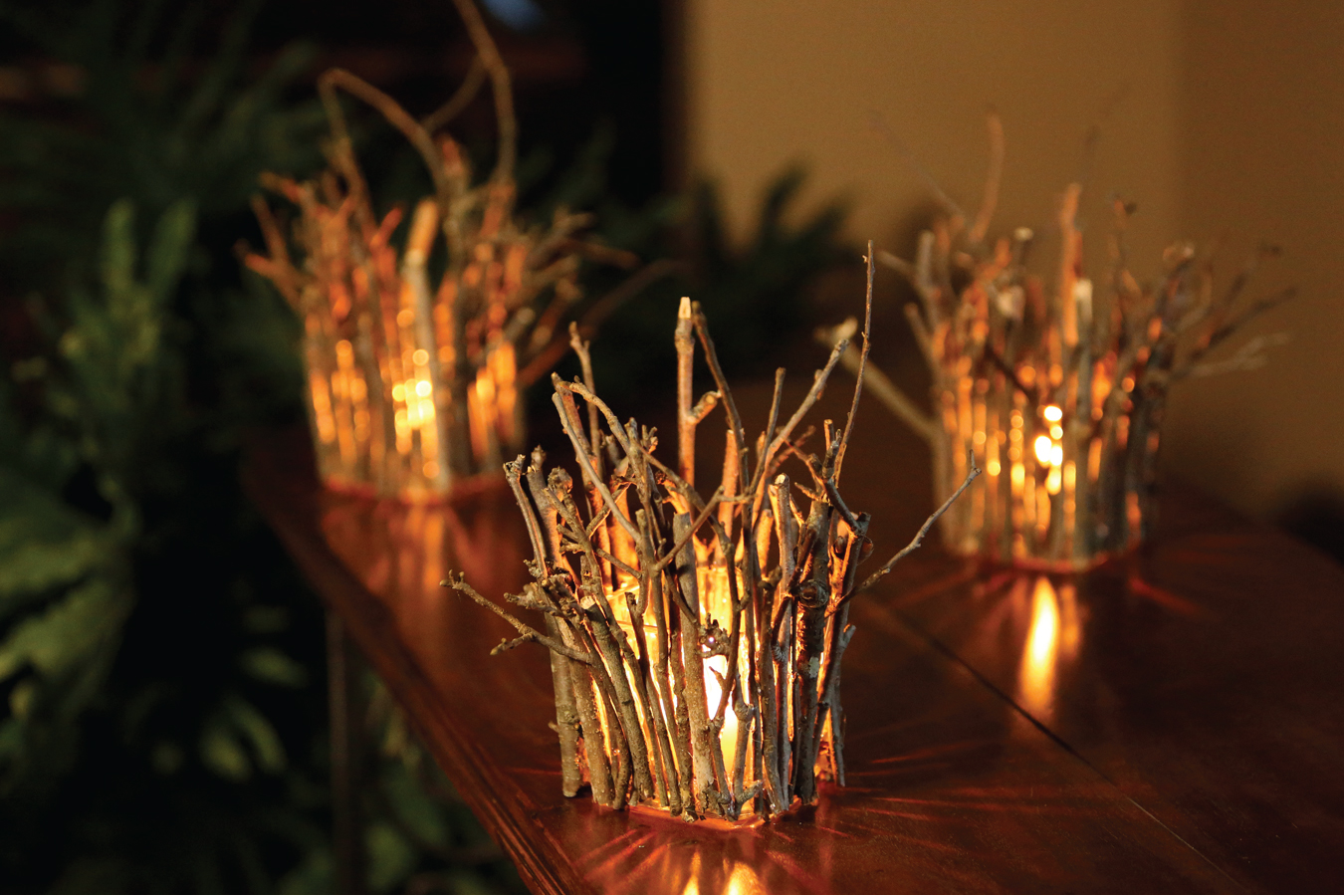 Sparkling branches