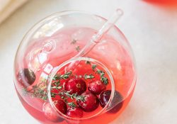 Cranberry thyme gin and tonic