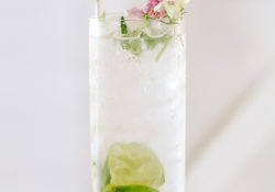 A classic gin and tonic in a highball glass with edible flowers, limes and green paper straw.
