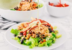 Barbecue chicken salad with coriander and lime sauce