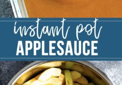 Instant pot applesauce (without sugar, no tips for preparing food)