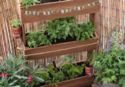 How To Create Vertical Garden For Your Small Balconies