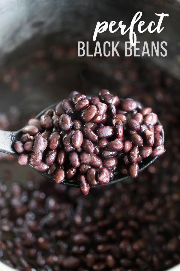 close up of a spoonful of perfect black beans
