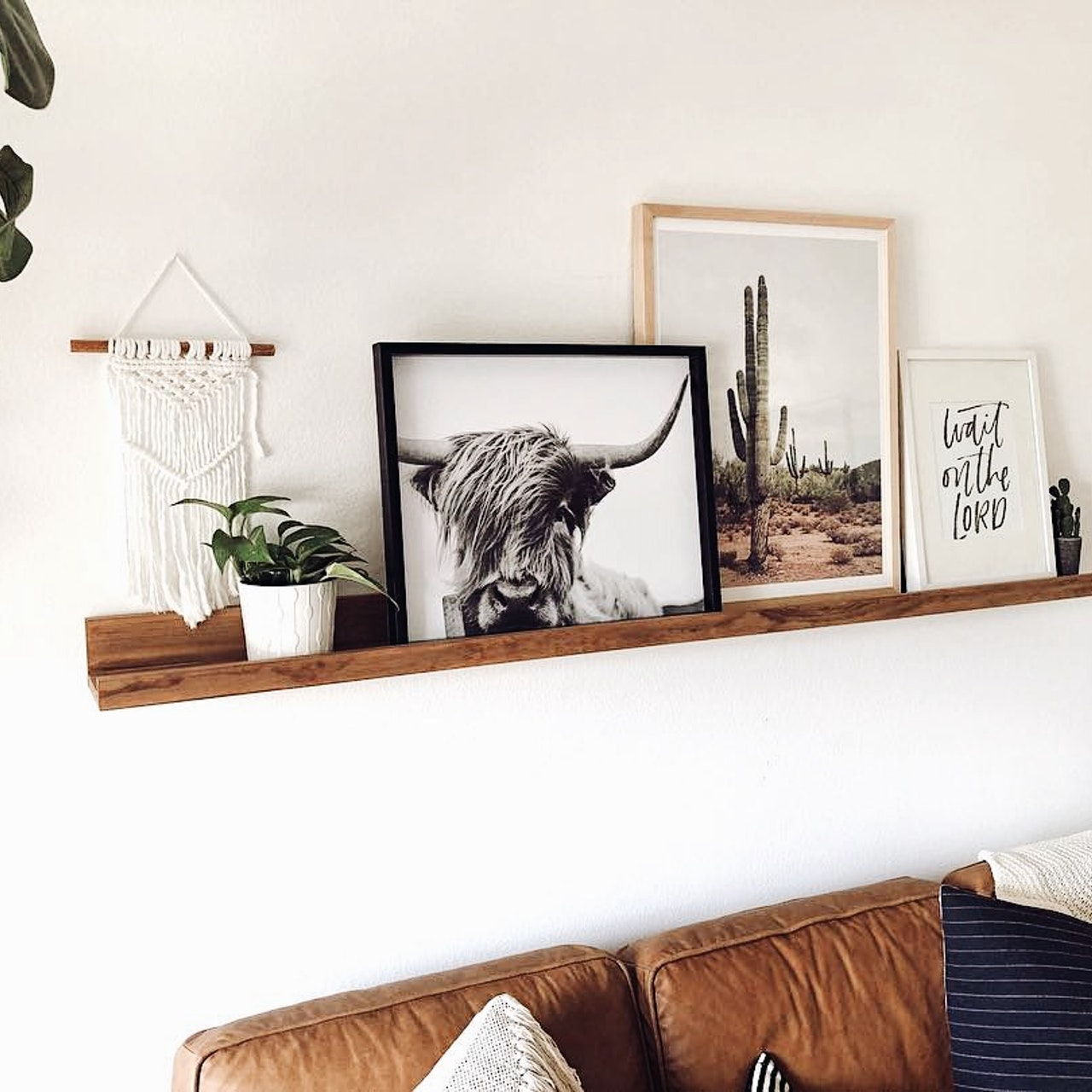 Trendy wall decoration poster with bison